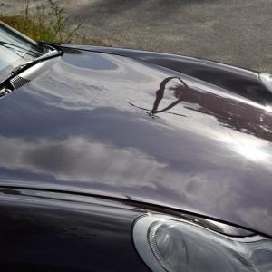 Porsche Carrera 911 23